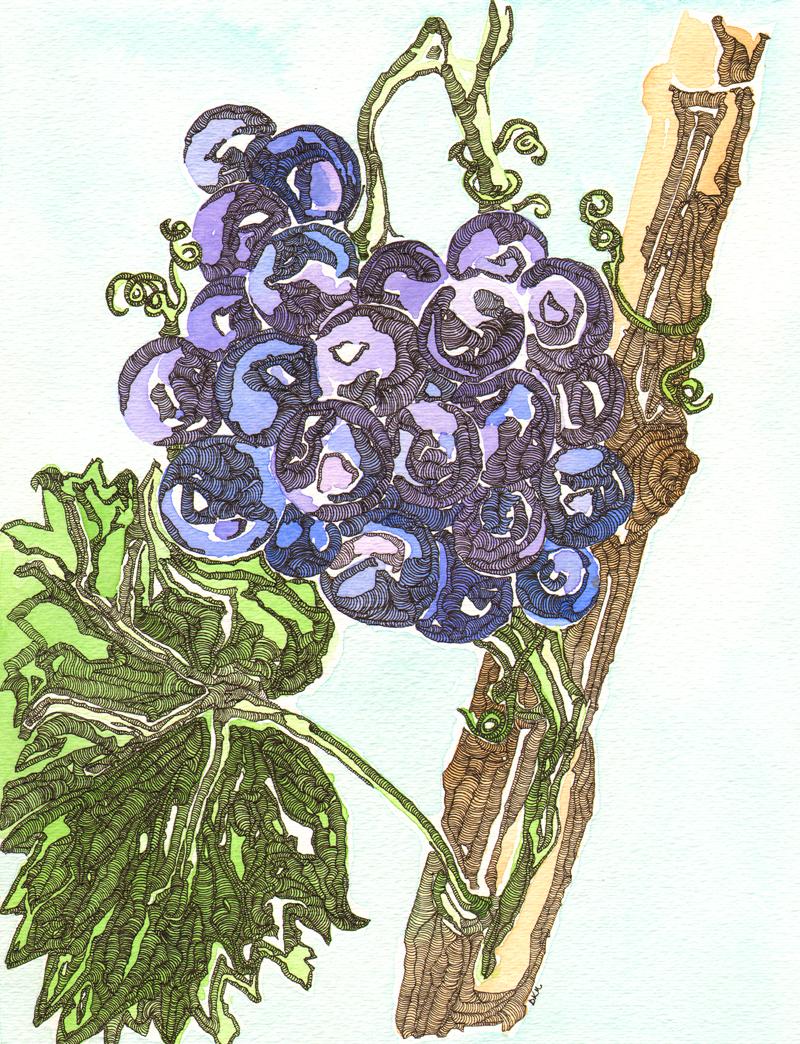 Illustration-Friday-Cultiva