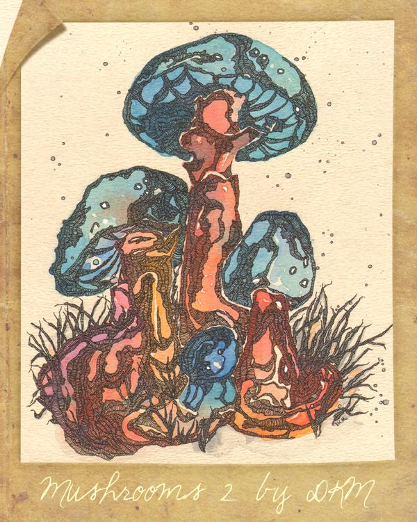Mushrooms2bydkm