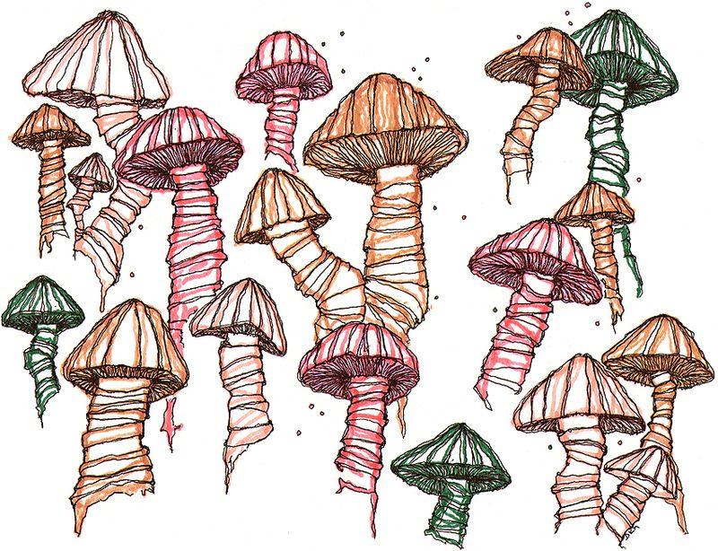 Mushroom-sketch