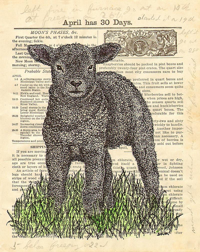 Illustration-Friday,-wool